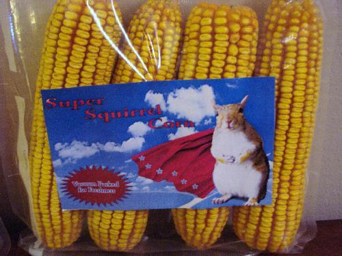 Super Squirrel Corn